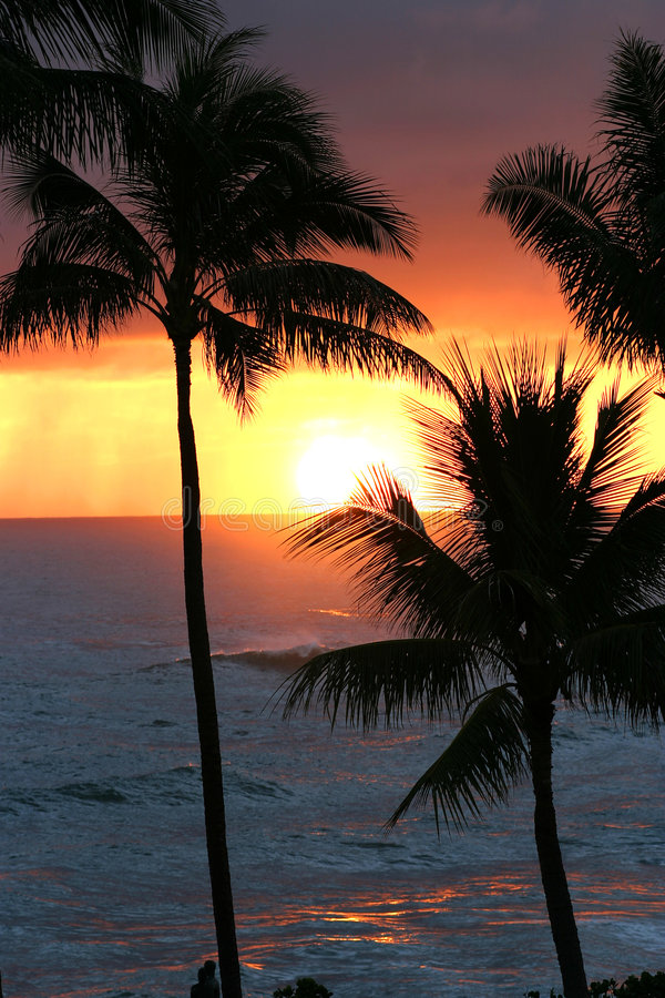 Tropical Sunset on Oahu in Hawaii stock images