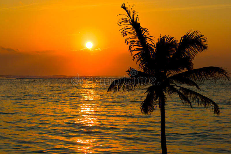 Download Tropical sunset scene stock photo. Image of oceans, beach - 11250672