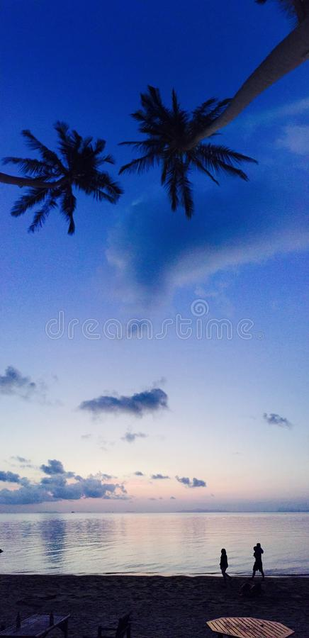 Download Tropical sunset stock photo. Image of horizon, vertical - 68598728