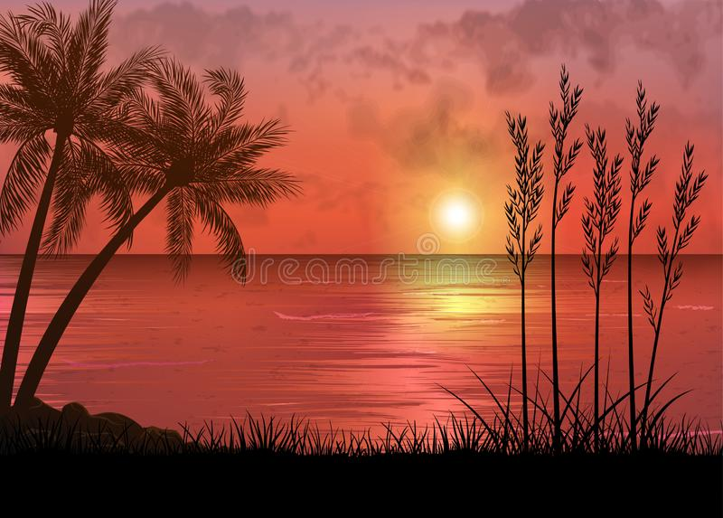 A Tropical Sunset or Sunrise with Palm Trees royalty free stock photo