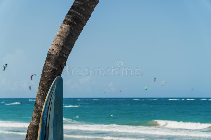 Tropical surfer`s paradise stock image