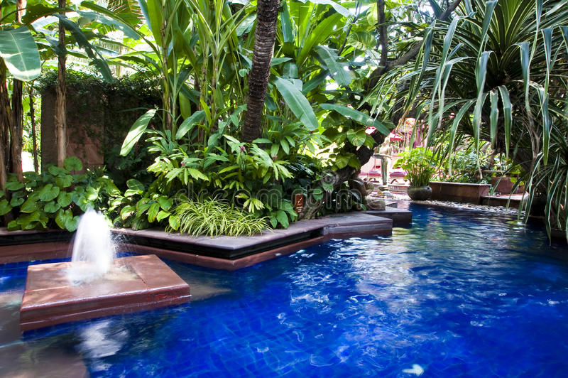 Download Tropical swimming pool stock photo. Image of balinese - 10240170