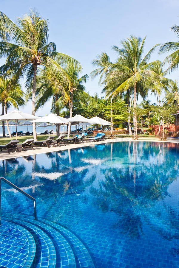 Download Tropical Swimming Pool stock photo. Image of exotic, landscape - 23485722