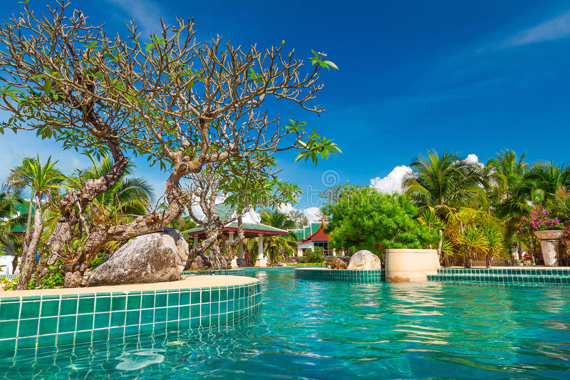 Download Tropical Swimming Pool In Thailand Stock Photo - Image: 29536170