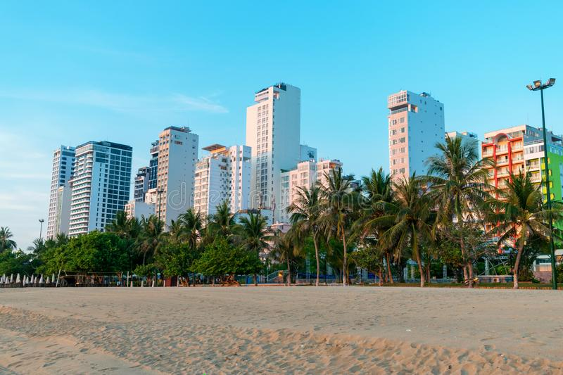 Tropical trees on beach and tall skyscrapers under light of morning sun in golden hour royalty free stock images
