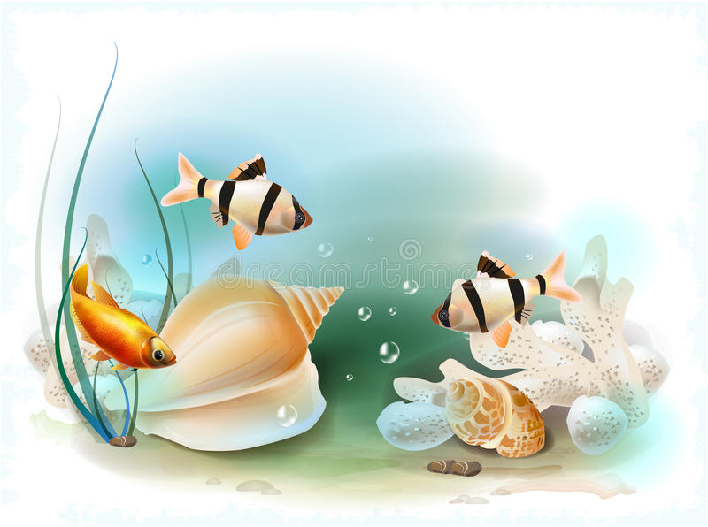 Tropical underwater world. Illustration of the tropical underwater world royalty free illustration