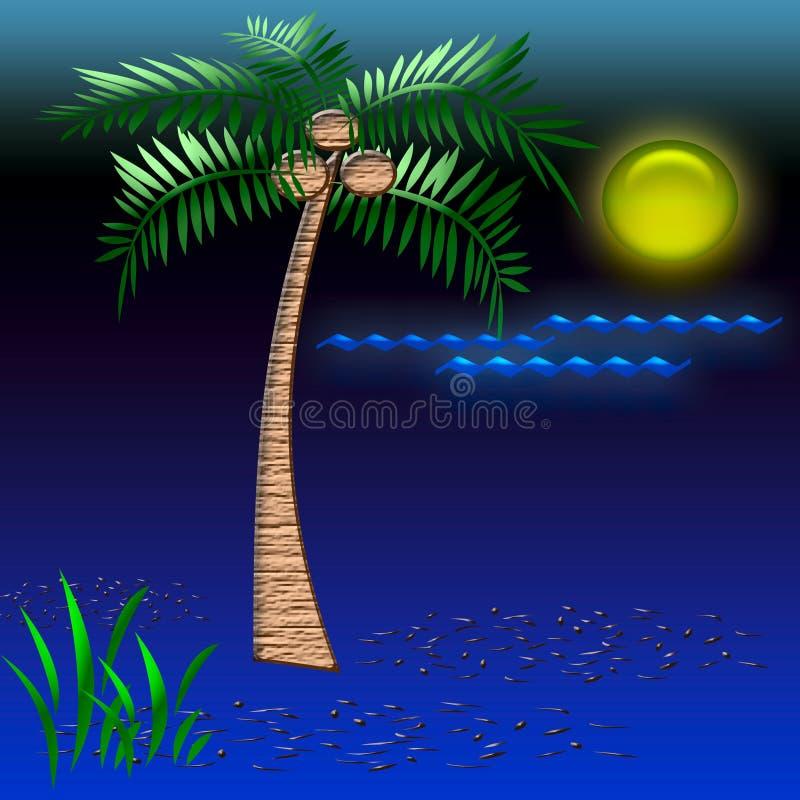 Tropical vacation art vector illustration