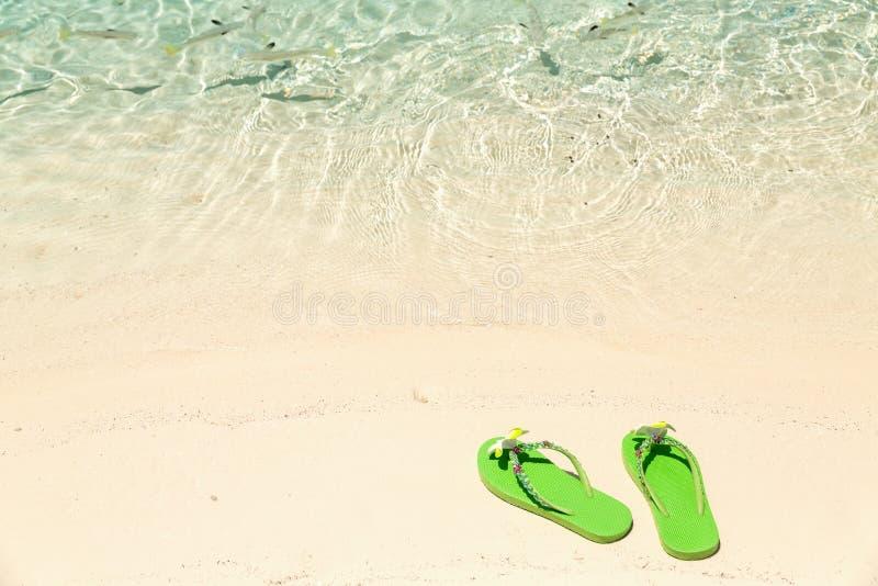 Tropical vacation concept—Green flip-flops on a sandy ocean be stock photos