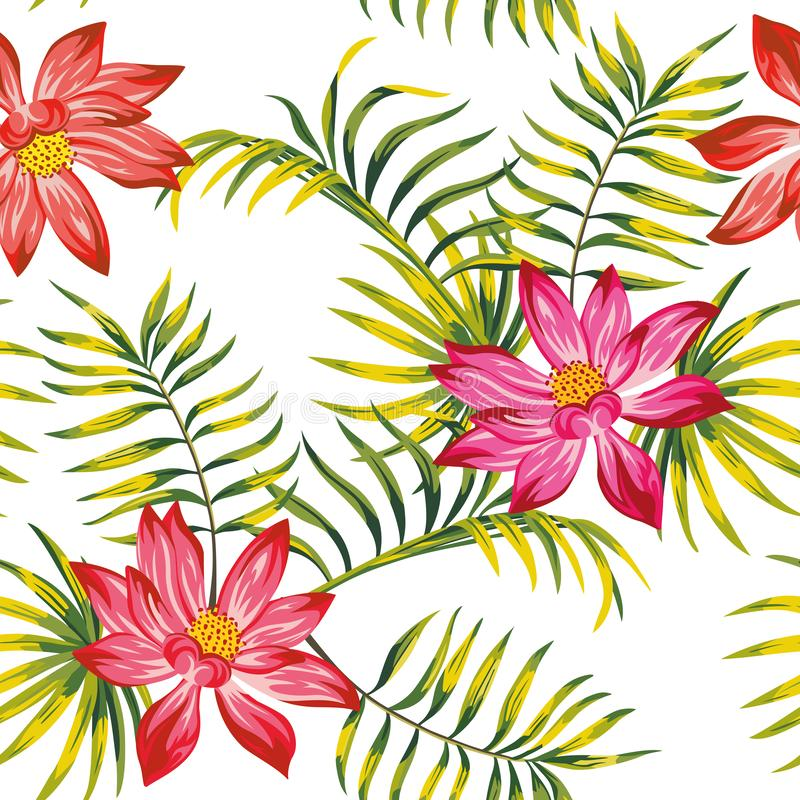 Tropical vector lotus flowers leaves seamless white background royalty free illustration
