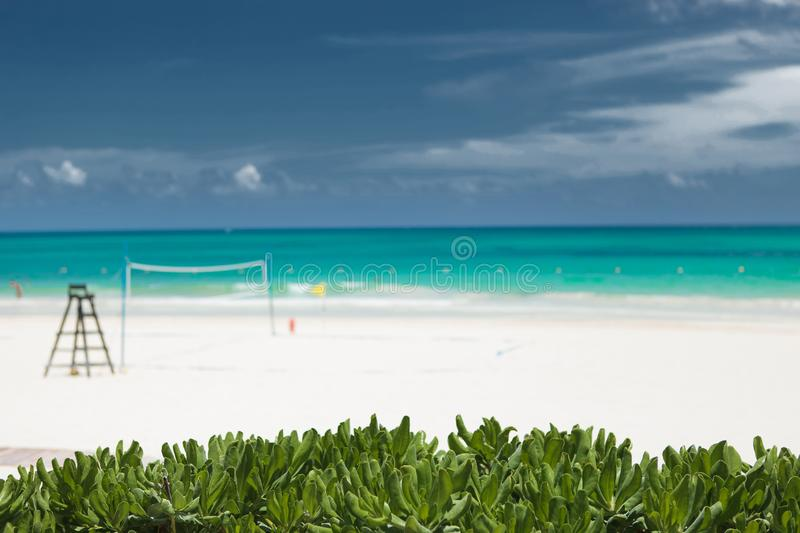 Tropical vegetation in fron of a beach voley field. In tulum, mexico royalty free stock photo