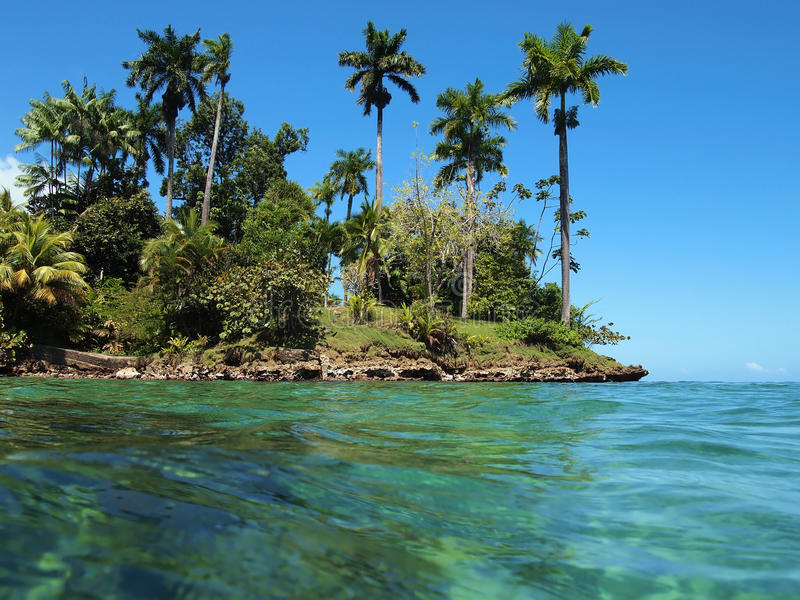Download Tropical Vegetation With Turquoise Water Stock Photo - Image: 23974178