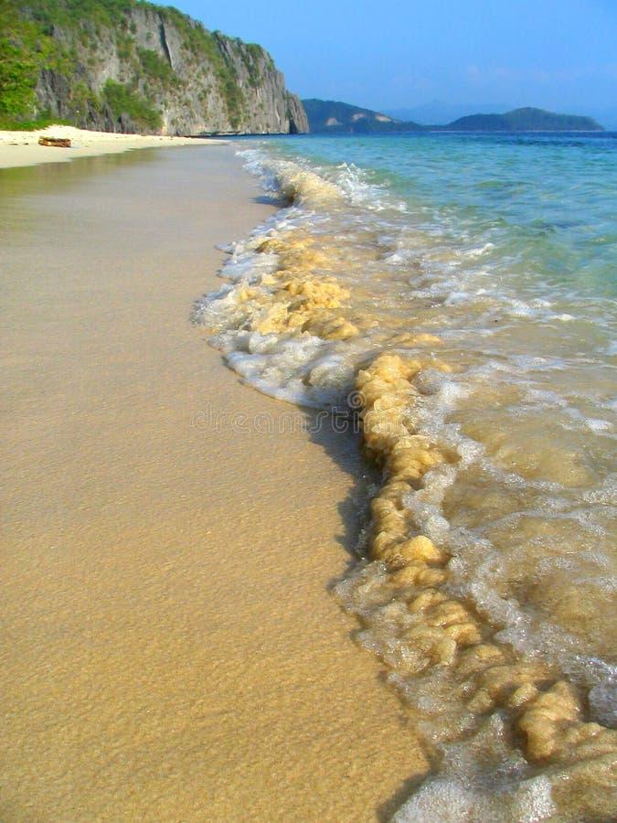 Tropical virgin beach royalty free stock image