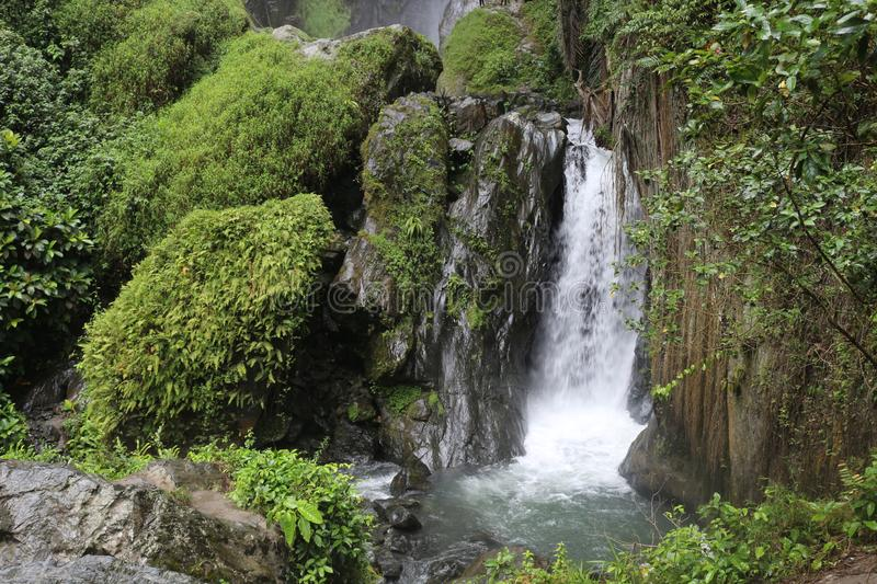 Tropical Waterfall in the Rainforest royalty free stock image