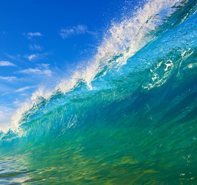 Download Tropical Wave stock image. Image of crash, barrel, nature - 9882999