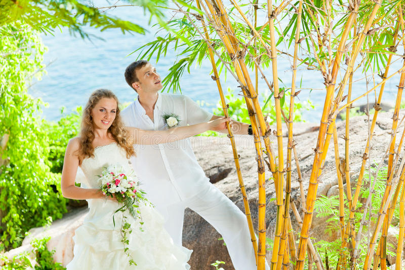 Download Tropical wedding stock photo. Image of beach, happiness - 21151440