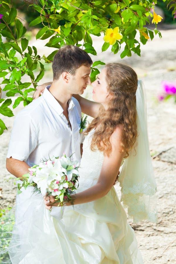 Download Tropical wedding stock image. Image of newlyweds, happy - 21329175