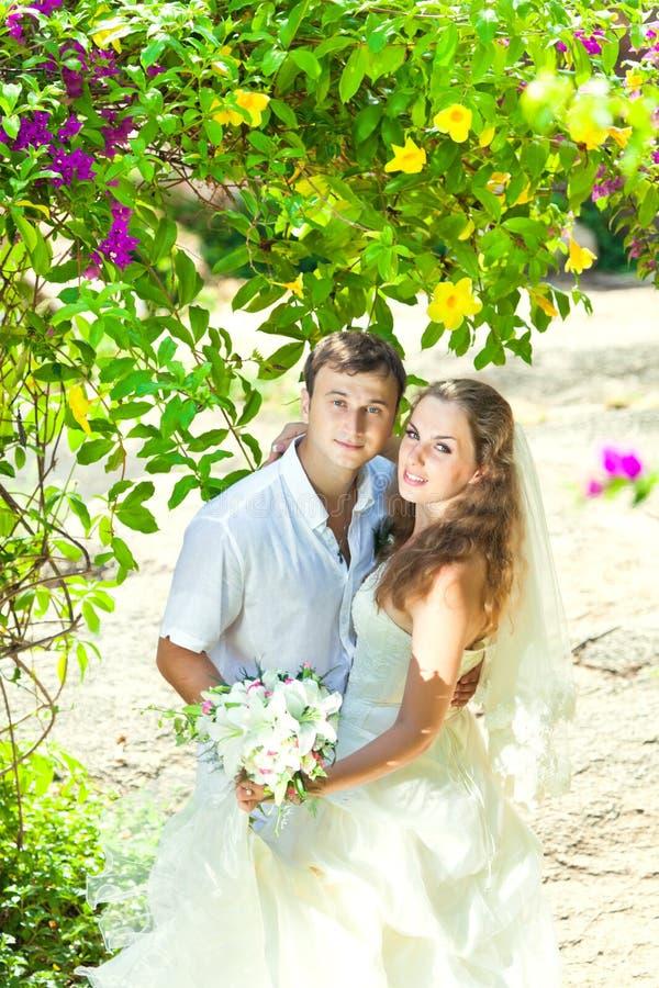 Download Tropical Wedding Stock Image - Image: 21329221