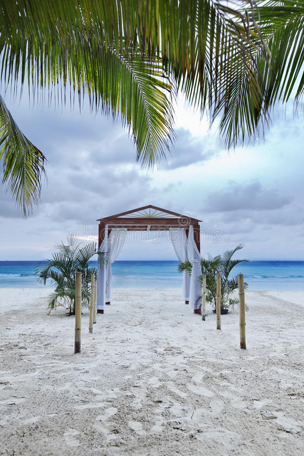 Download Tropical Wedding stock image. Image of romantic, palm - 28512781
