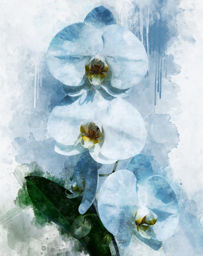 Free Tropical White Orchid Plant With White Flowers And Green Leaves. Watercolor Drawing. Floral Illustration Royalty Free Stock Images - 157867029