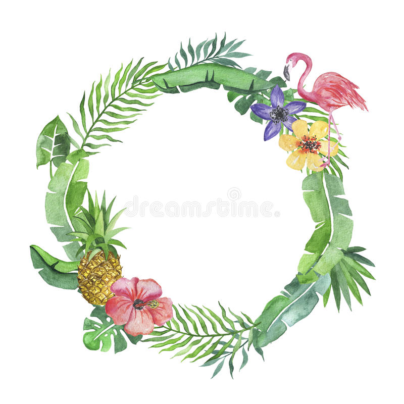 Stock Illustration Tropical Wreath Flamingo Pineapple Beautiful Watercolor Nice Watercolor Illustration Leaves White Image91128461 on Banana Border Clip Art
