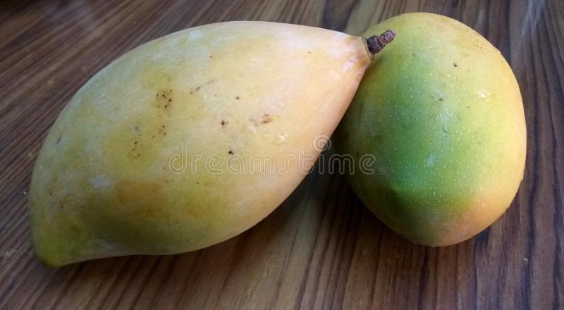 Tropical Yellow Mangoes. A close up click of two sweet and ripen yellow mango fruit placed ona wood surface stock images