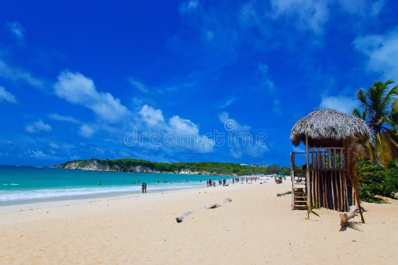 Tropican plaża obrazy royalty free