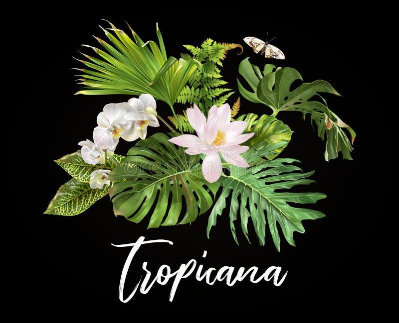 Tropicana planta el compostion stock de ilustración