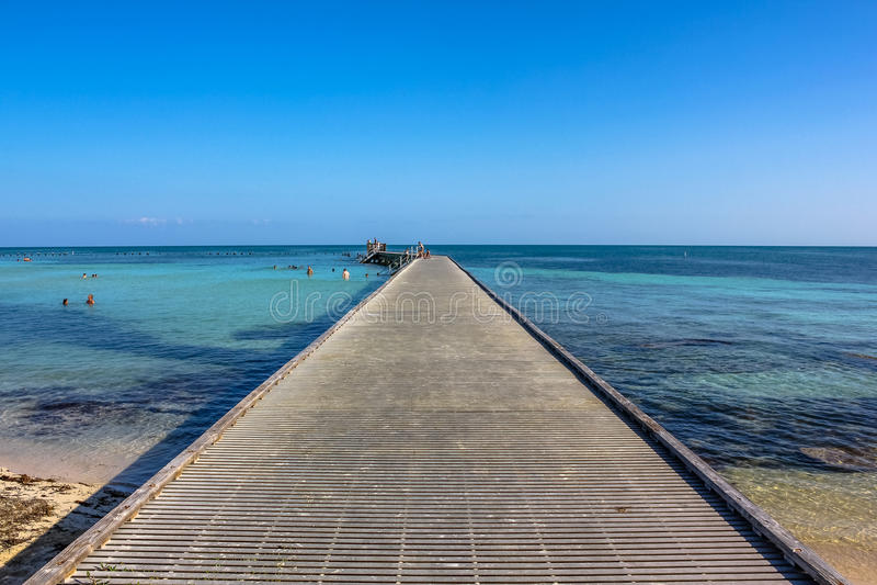 Tropici di Key West fotografie stock