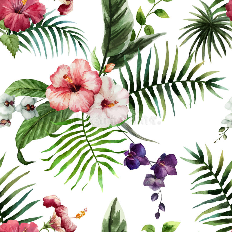Tropics4 stock illustrationer
