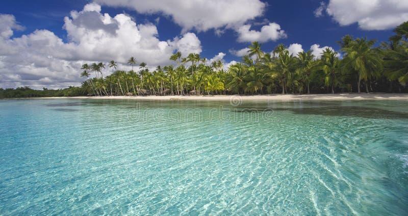 tropics στοκ φωτογραφία με δικαίωμα ελεύθερης χρήσης