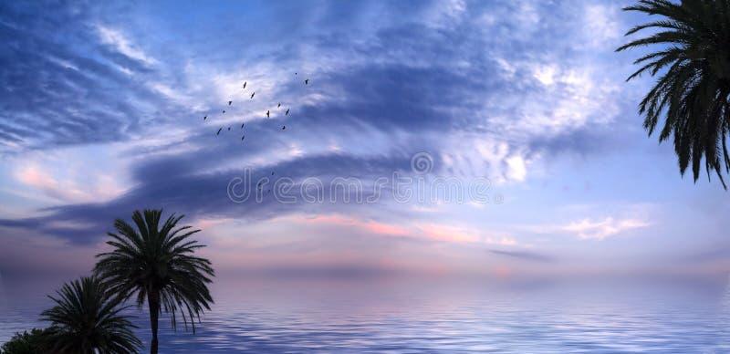 Tropikal Sunset royalty free stock image