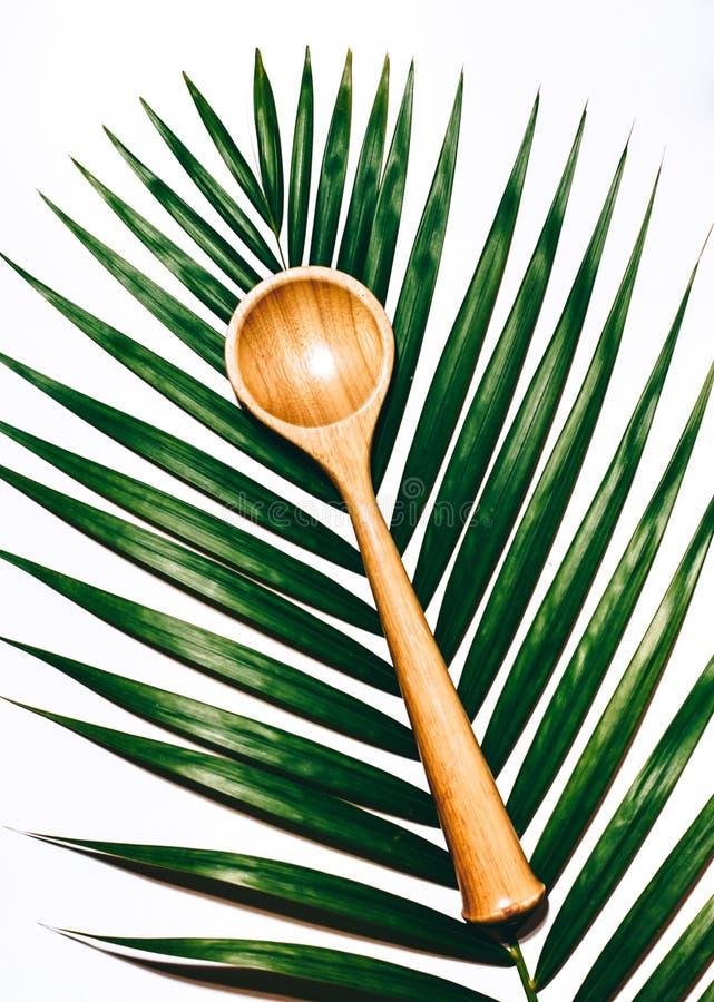 Tropikalna łyżka obrazy stock