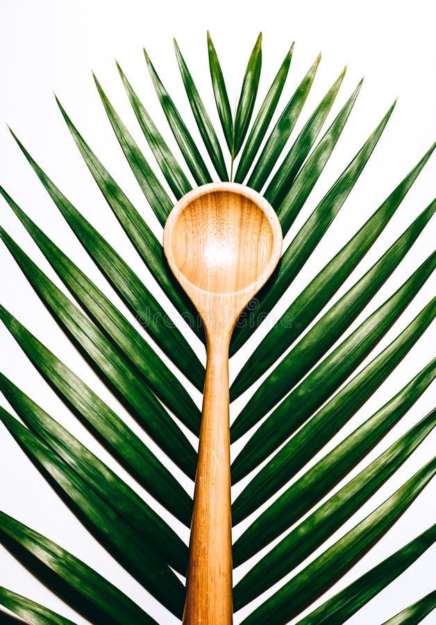 Tropikalna łyżka zdjęcia royalty free