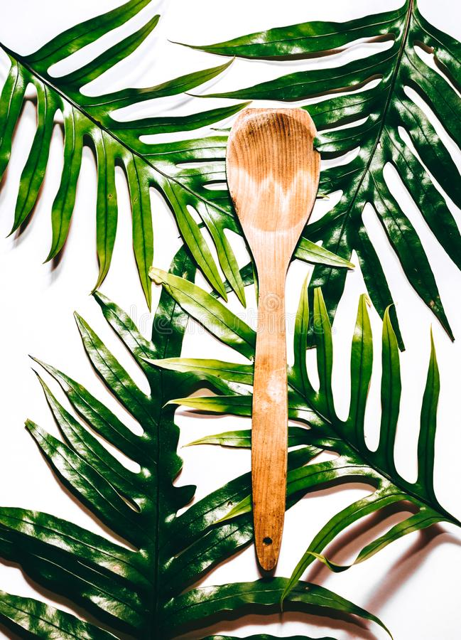 Tropikalna łyżka zdjęcie royalty free