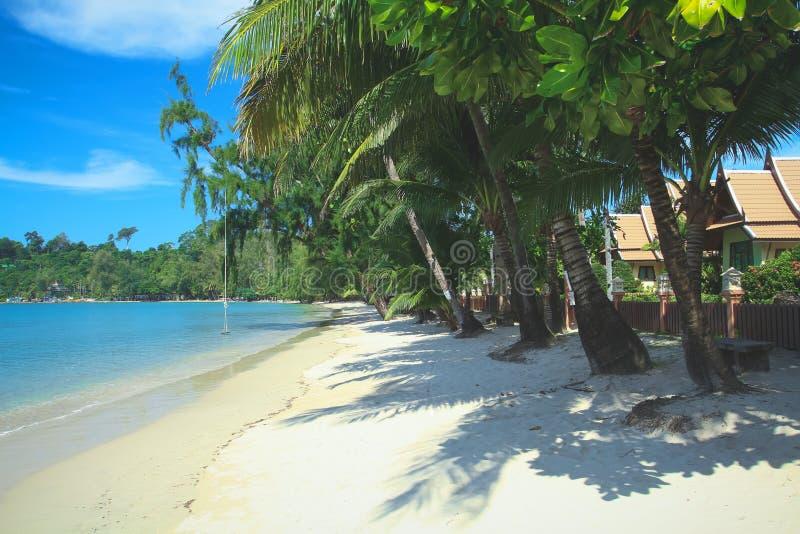 Tropikalna drzewko palmowe plaża z luksusowymi bungalowami na Koh Chang zdjęcie stock