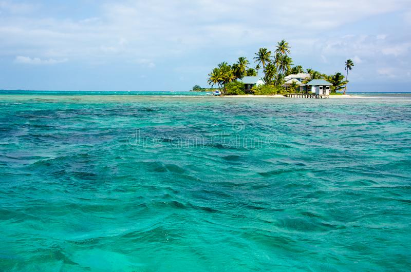 Tropikalna i raj ma?a wyspa w morzu karaibskim Belize Ameryka ?rodkowa obraz royalty free