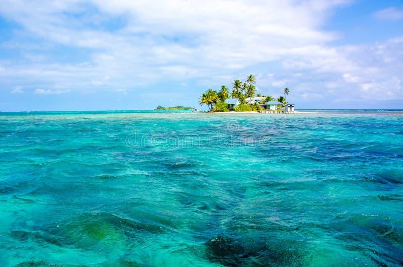 Tropikalna i raj ma?a wyspa w morzu karaibskim Belize Ameryka ?rodkowa fotografia royalty free
