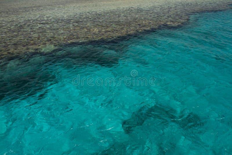 Tropikalna Jasna błękitne wody i korale fotografia royalty free