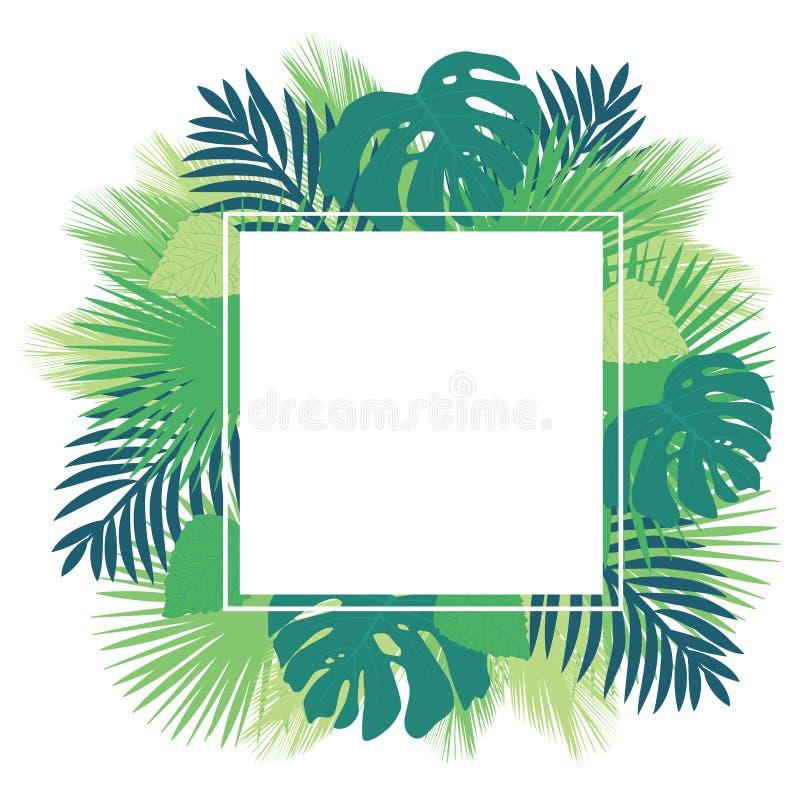 Tropikalna liścia loga rama ilustracja wektor