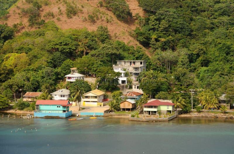 tropikalna nabrzeżna sceneria zdjęcie royalty free