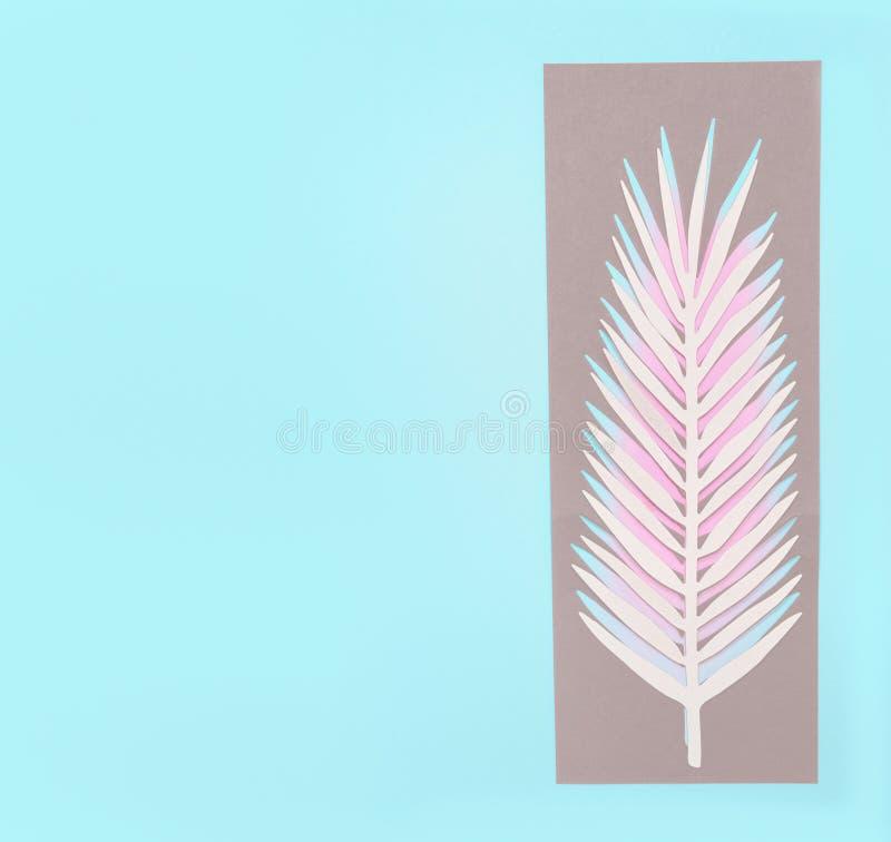 Tropikalna palma opuszcza na pastelowym błękitnym tle, odgórny widok, mieszkanie nieatutowy Kreatywnie botaniczny uk?ad kosmos ko zdjęcia stock