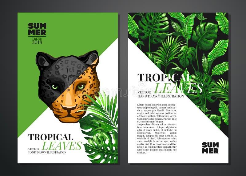 Tropikalna palma opuszcza tło zdjęcia royalty free