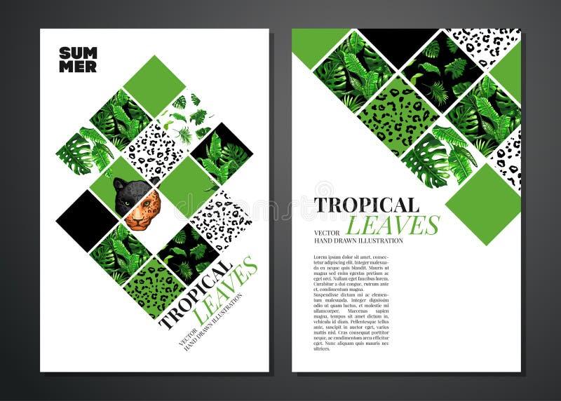 Tropikalna palma opuszcza tło zdjęcie royalty free