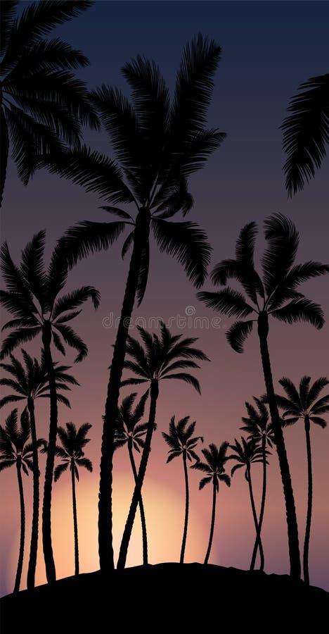 Tropikalna palma z pomarańczowym słońce zmierzchem, niebieskim niebem i ilustracja wektor