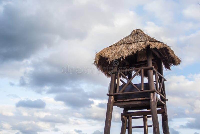 Tropikalna Palmowa buda obraz royalty free