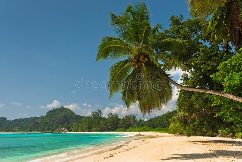 Tropikalna plaża przy Mahe wyspą Seychelles zdjęcie stock