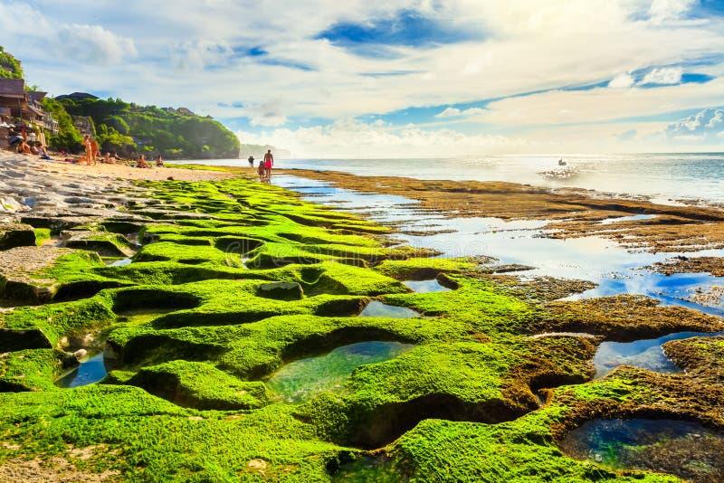 Tropikalna plaża w Bali fotografia royalty free