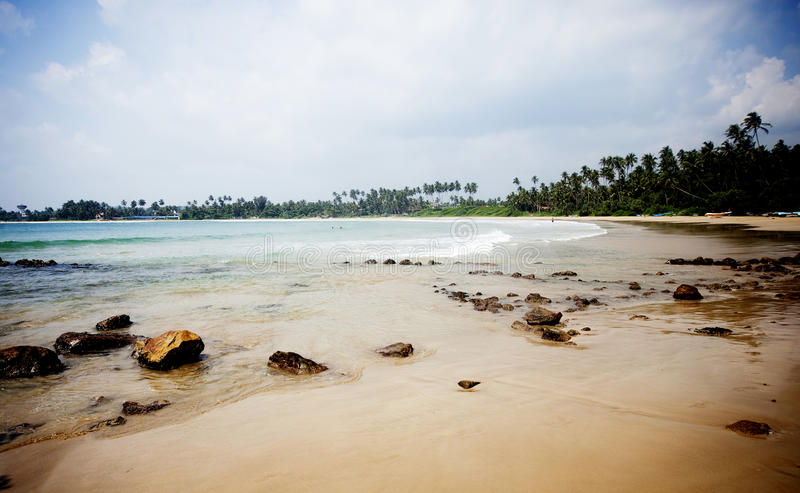 Tropikalna plaża w Sri Lanka obrazy royalty free