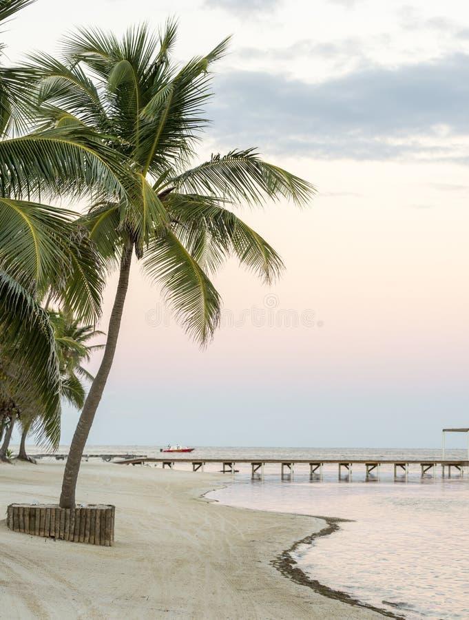 Tropikalna Plażowa samotność zdjęcie royalty free