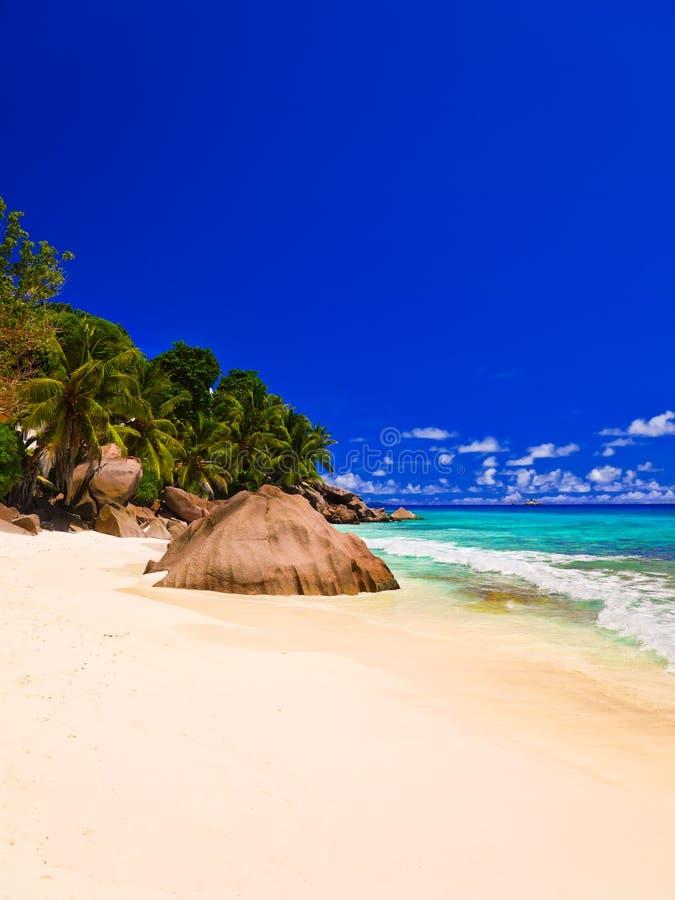 Download Tropikalna plaża zdjęcie stock. Obraz złożonej z wakacje - 28965672